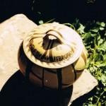 Birth Pot 1988